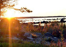 Parc national de Lahemaa: le majestueux poumon vert estonien!