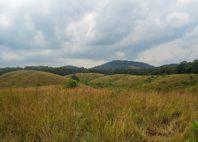 Parc national de la Lopé