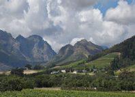 Région des vignobles
