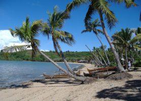 Réserve Naturelle de Lokobe: la belle échappée malgache
