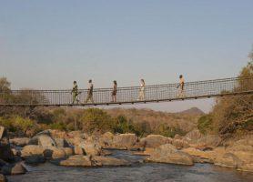 Réserve de Majete: le sanctuaire sacré des animaux malawites
