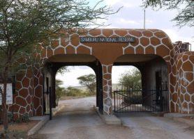 Réserve de Samburu : un exceptionnel parc africain