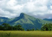 Réserve du Mont Nimba