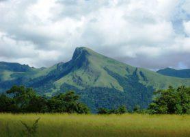 Réserve du Mont Nimba: splendeur naturelle et richesse écologique