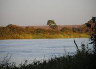 Parc national du W