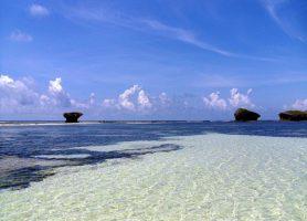 Watamu: sable fin, palmiers et mer bleue
