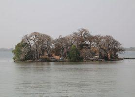 Île Kunta Kinteh: la merveilleuse île souvenir!
