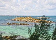 Île de Batz