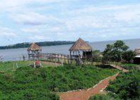 Île de Ngamba