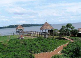 Île de Ngamba: une réserve ougandaise hors du commun