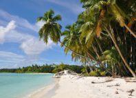 Île Salomon