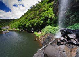 Chutes de Tamarin: belles cascades en forêt