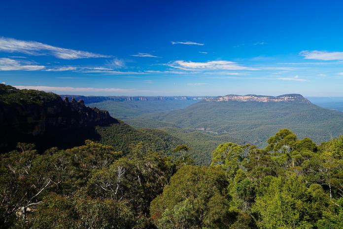 Parc national des Montagnes Bleues